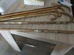 houten wandel stokken met of zonder schildjes en met een st